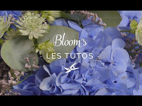 box-bloom's-du-21-septembre,-avec-gilles-pavan