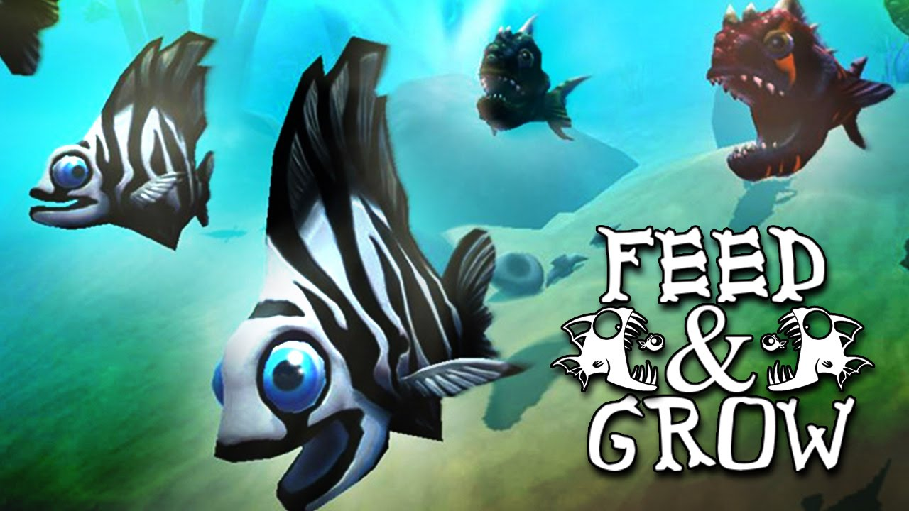 To become kingfish feed and grow fish 1 youtube for Feed and grow fish the game