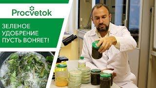 Пусть воняет! Вся правда о зеленых удобрениях и ЭМ-препаратах