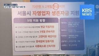 연 매출 2억 미만 서울 자영업자, '생존자금' 140…