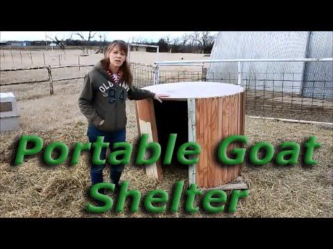 portable goat shelter - youtube