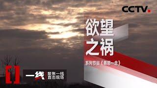 《一线》善恶一念·欲望之祸 20200507 | CCTV社会与法