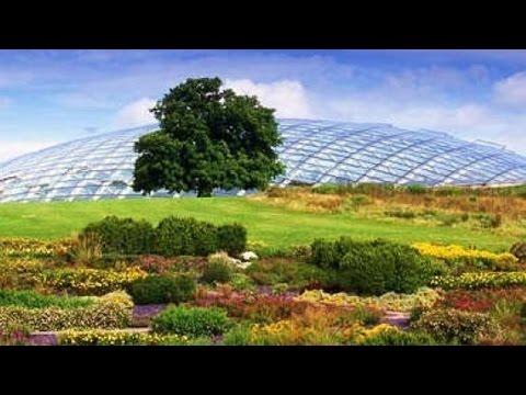 Wales National Botanic Garden 10K 2016