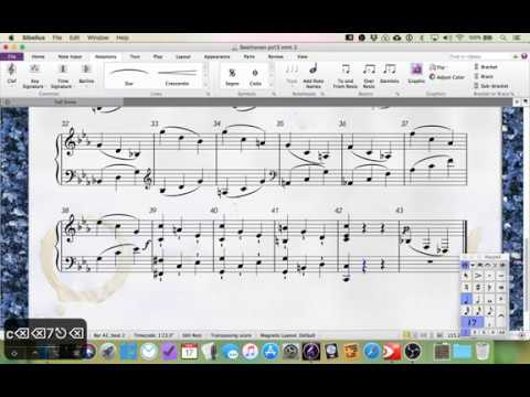 Working in Sibelius #1