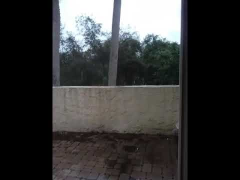Hurricane Irma Deltona Florida Sunday
