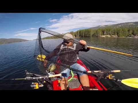 Huntington Lake Fishing California Brown Trout