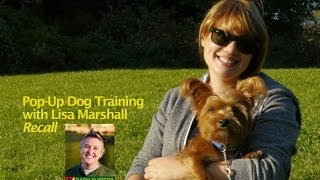 "Dog Training For The Recall ""come"" - A Pop-up Session With Toronto Dog Trainer Lisa Marshall"