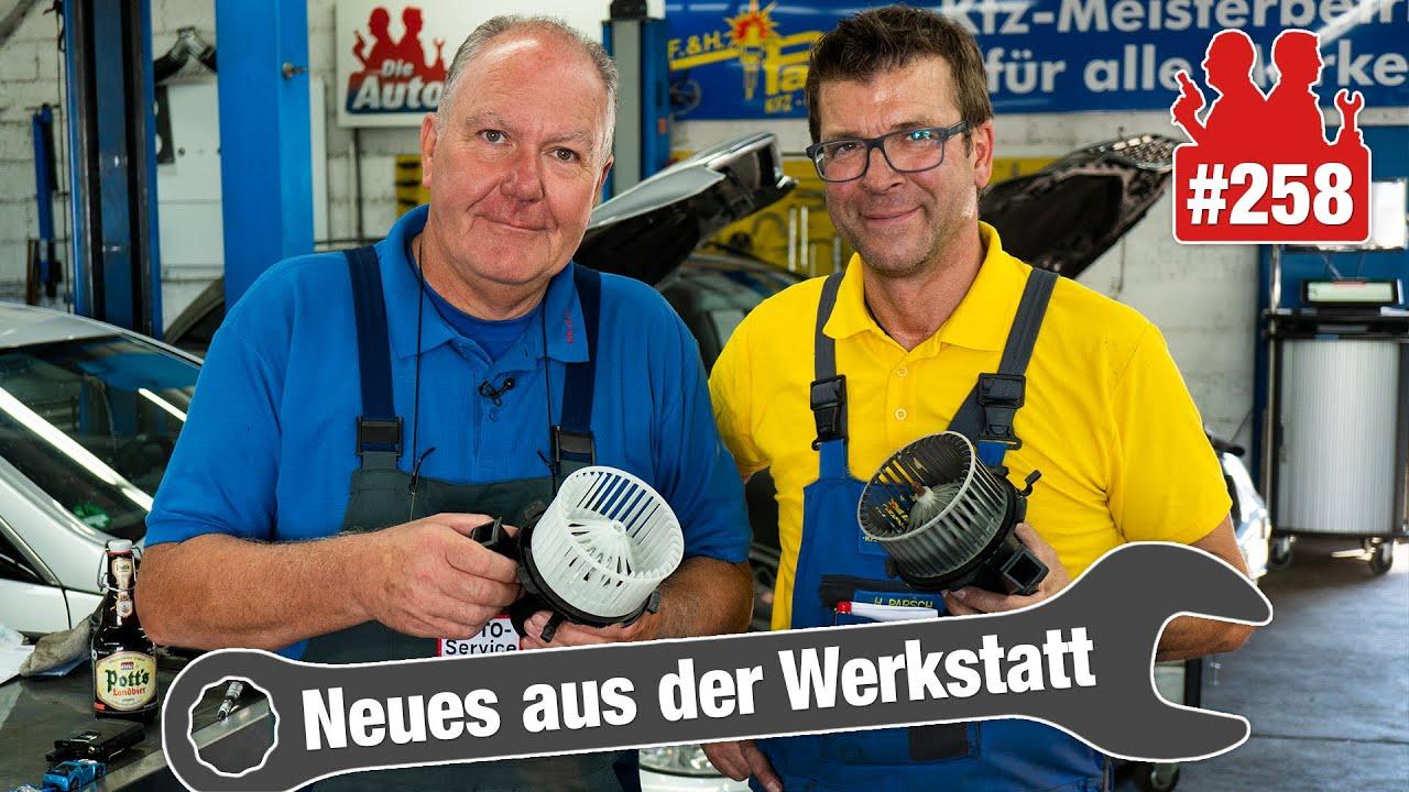 Ein echter Amerikaner 🐎, ein billiger Smart-Lüfter und Werner kurz vor der Rente!
