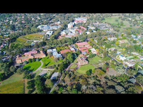 Phantom 4 Pro CSIRO at Waite Campus