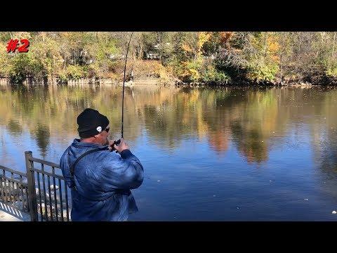 Multi Species Fishing Midland
