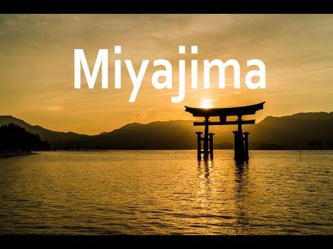 Mitaki & Miyajima (m24instudio Japan vlog day 6)