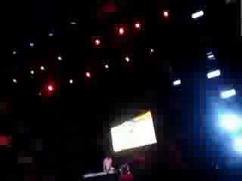 4 Strings  Acapulco Music Festival II