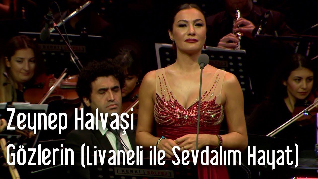 Zülfü Livaneli - Harbiye Konseri (2010)