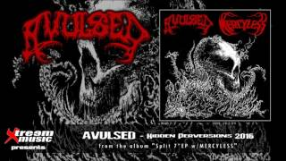 Watch Avulsed Hidden Perversions video