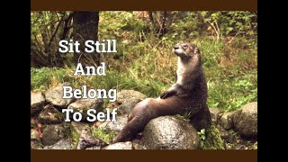 Collective Message - Sit Still and Belong to Self