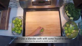 Feel the Green Juice Recipe #3