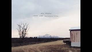 Will Johnson - Wire Mountain (Full Album)