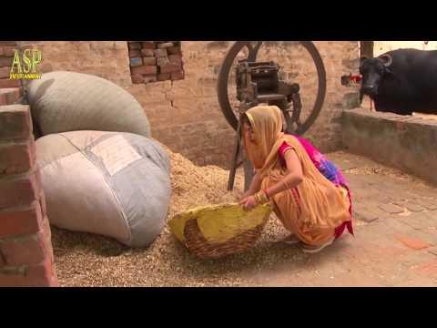 Sarpanch Haryanvi Song | Sheenam Katholic Video Song |  AJ Jamalpuriya | MD.JD