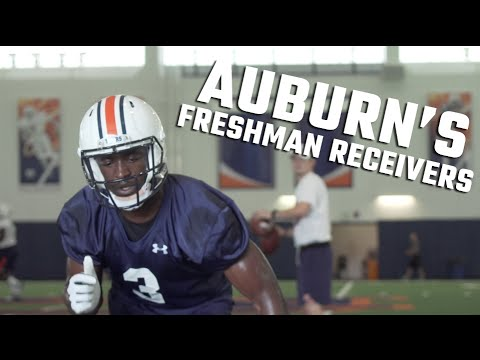Which freshmen on Auburn's offense could play against Clemson?