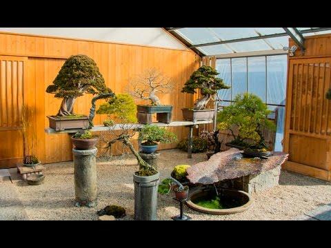 Shinji Suzuki's Bonsai garden