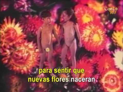Café Tacvba - Las Flores (Official CantoYo Video)