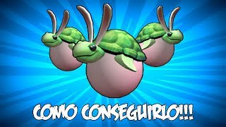 COMO CONSEGUIR EL Egg of Slow'n'Steady | ROBLOX ESPAÑOL