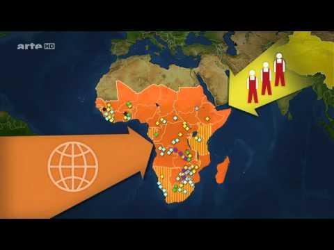 L'Afrique noire, zone de croissance