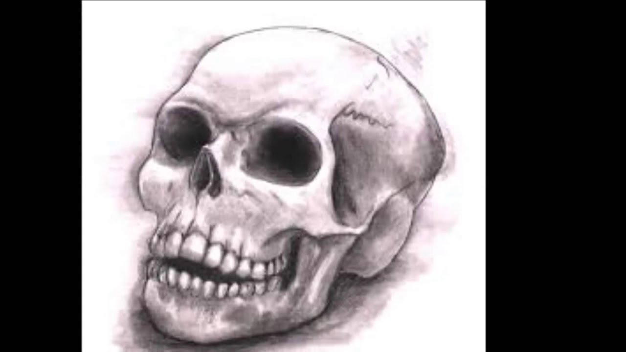 The Best Skull Drawings Youtube