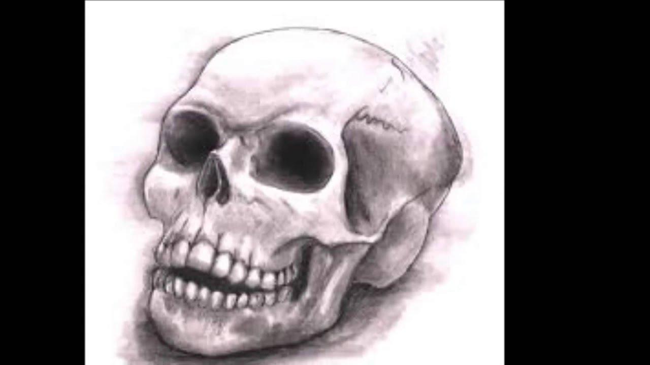 The Best Skull Drawings  Youtube