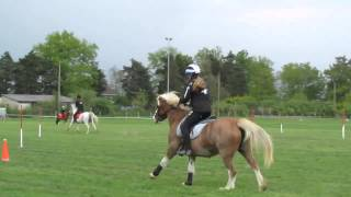 Pony Games - Paire Emmy & Brune WRR