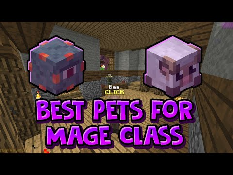 The Best Pet To Pick For Mage Class Hypixel Skyblock Youtube