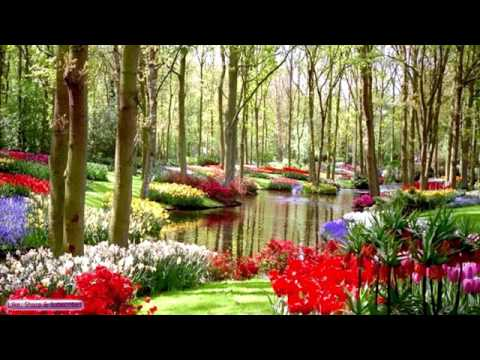 3 Hours Relaxing Piano Music Vol. 4 For Meditation, Stress Relief, Relaxation 🎧 151