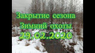 Закрытие сезона зимний охоты 29 02 2020 Солонец для Лося АэроСъемка