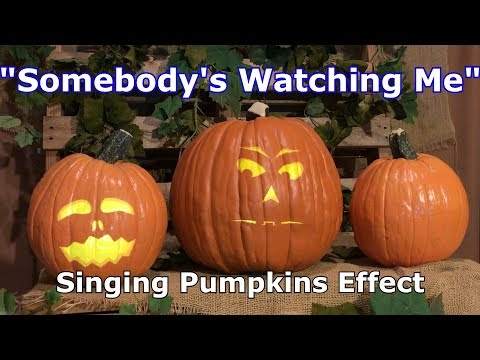 Somebody's Watching - Singing Pumpkins Effect Animation