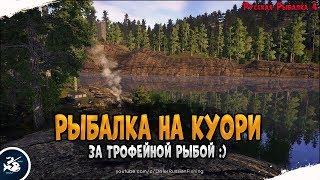 Озеро Куори Охота на Хищника Driler Русская Рыбалка 4