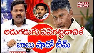 Chandrababu Decides To Form Shadow Cabinet To Track Jagan Regi…