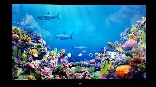 GESICHTET & GESUCHTET: HiQ Amazing Coral Reef 3D Dynamic Theme now available in Europe the best Ps4
