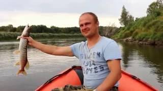 Рыбалка на реке Тура в Болотовское!