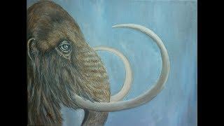 Mammut, acrylic, speed painting, work in progress, wildlife, animal portrait