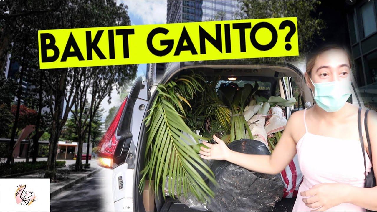 MGA GANAP NGAYONG MECQ! (JUSKO BAKIT GANITO?)| Nina Rayos 💋