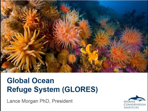 Global Ocean Refuge System to Protect Marine Life Worldwide (GLORES)