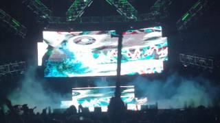 Video Marshmello @ Lollapalooza Argentina 2017 - Pop Dat x Jotaro x Purple Lamborghini download MP3, 3GP, MP4, WEBM, AVI, FLV Agustus 2018
