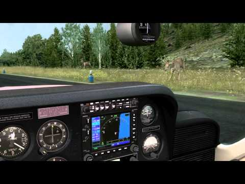 Alabeo Cessna 177  II (FSX - FULL HD)