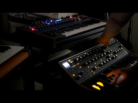 DSI Mono Evolver Keyboard + Moog Sub 37 Synth + Korg Wavedrum