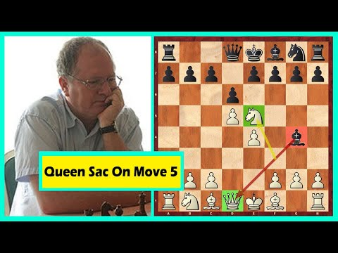 This Is Insane! Queen Sacrifice On Move 5