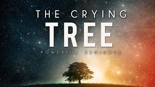 The Crying Tree ᴴᴰ | True Emotional Story | TheProphetsPath