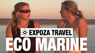 Eco Marine (Australia) Vacation Travel Wild Video Guide