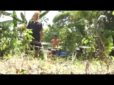 Indonesia – Dayaks y Drones
