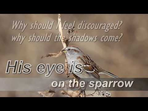 His eye is on the sparrow  (Instrumental)