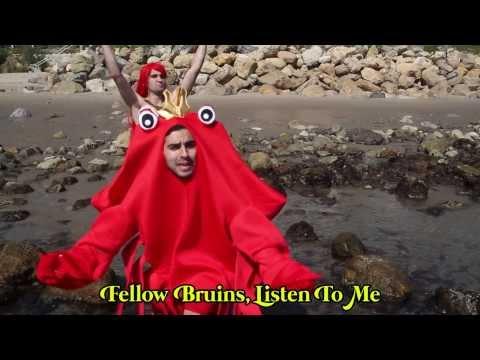 Under The Sea - Environmental Version (Music Video)